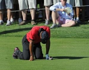 Tiger-Woods-2014